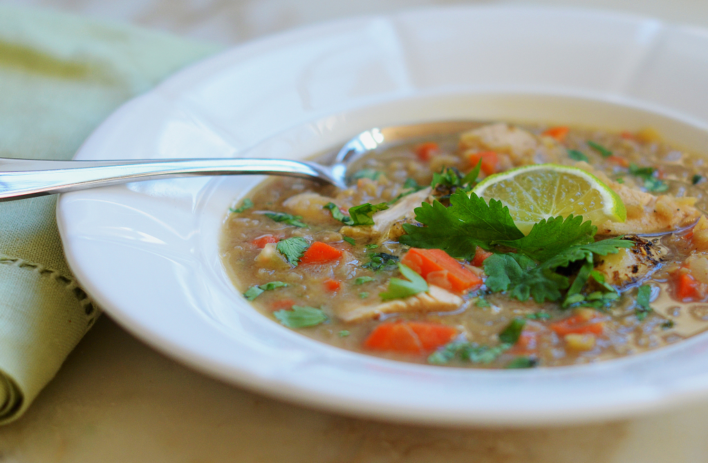 Indian spiced red lentil chicken soup once upon a chef forumfinder Images