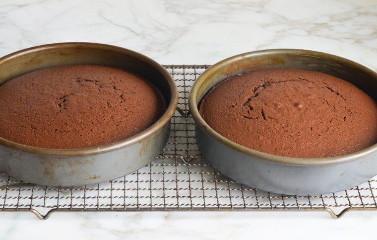 baked chocolate cake layers